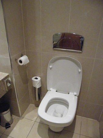 Pillo Hotel Ashbourne : bathroom