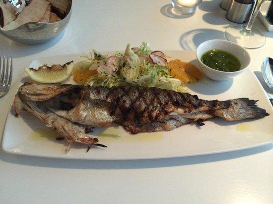 Filini: Branzino - beautifully grilled and perfectly seasoned sea bass