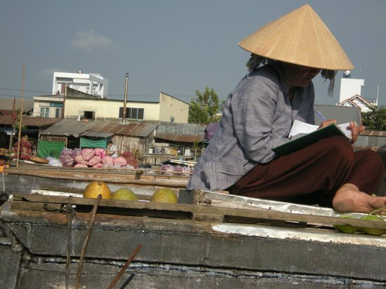 Buffalo Tours: Delta du Mekong