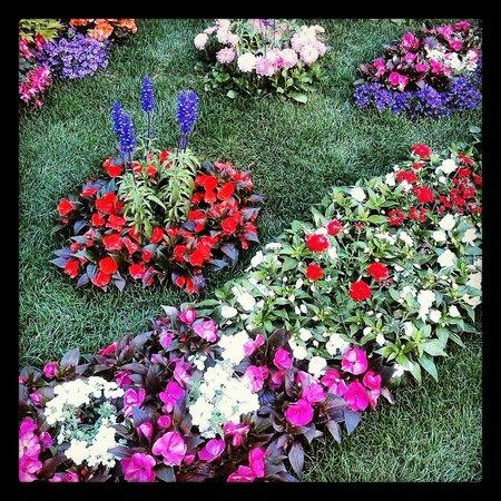 Ricetto di Candelo: Ricetto in fiore