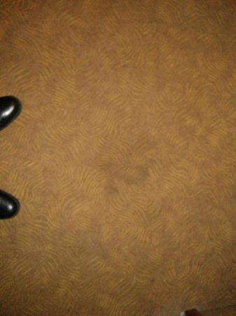 Ibis Dublin: Ill advised carpet pattern