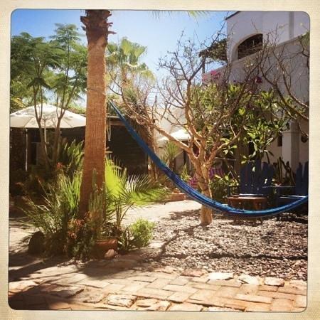 El Angel Azul Hacienda: Hängematte...