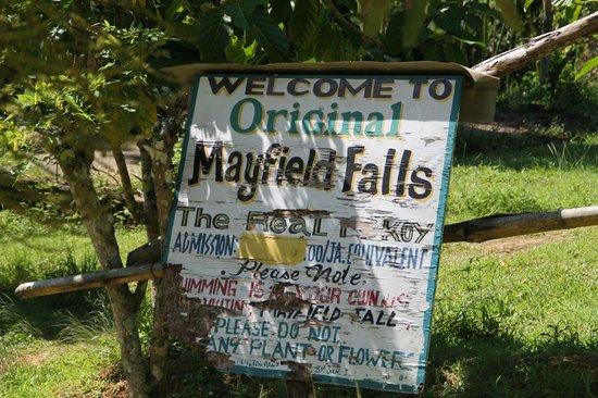 Mayfield Falls: Ingresso