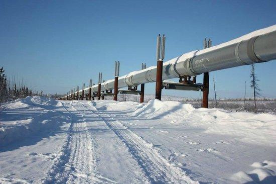 Northern Alaska Tour Company: Trans Alaskan Pipeline