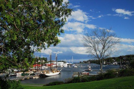 Blackberry Inn: Camden harbor view with schooners