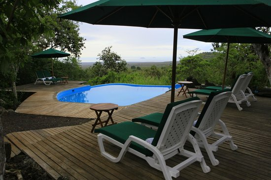 Galapagos Safari Camp: the pool area