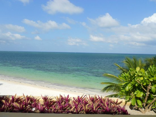 Zoetry Paraiso de La Bonita : View from terrace
