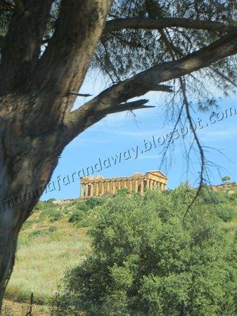 Valley of the Temples (Valle dei Templi): Vista sul tempio della Concordia