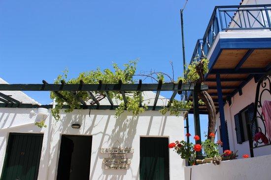 Papadakis Villas : Ausblick von den unteren Terrassen