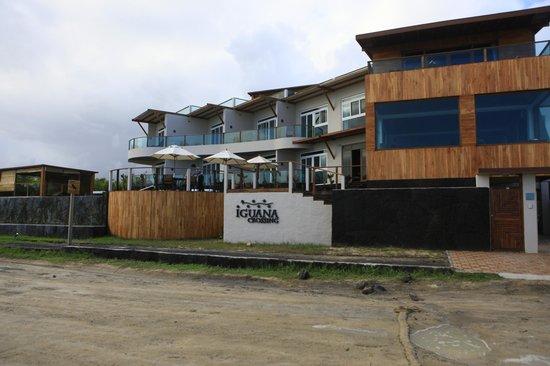 Iguana Crossing: hotel form road