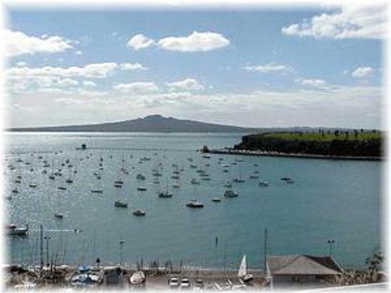 Fergs Kayaks Auckland - Water Sports Hire: Okahu Bay