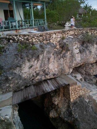 Citronella: Cave House
