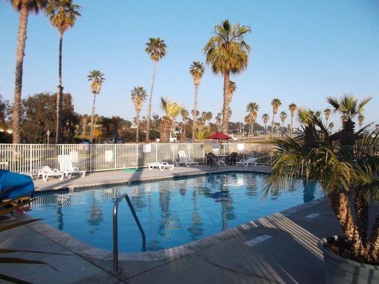 Motel 6 Ventura Beach: Espace piscine.