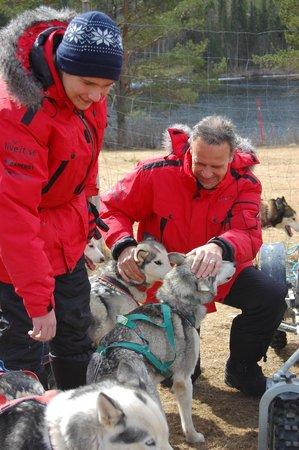 Aurora Borealis Adventures: Honden heel aanhankelijk en knuffelbaar