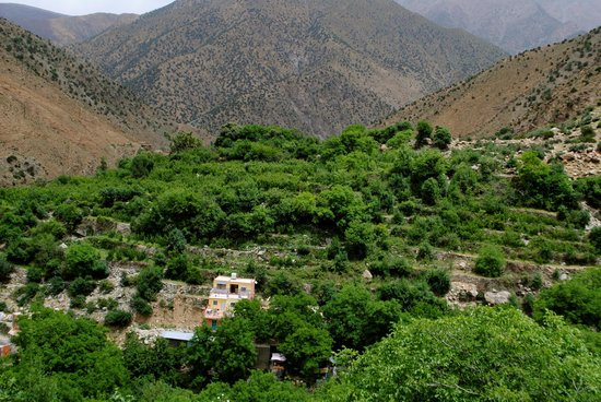 Discover Morocco Tours: Ourika valley