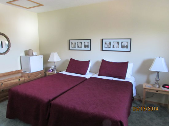 Newcastle Country Inn: 2 Single twin beds