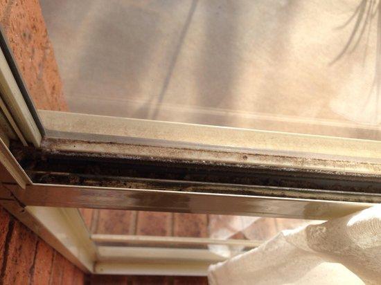 Balranald Colony Inn Motel : Dirty windowsill