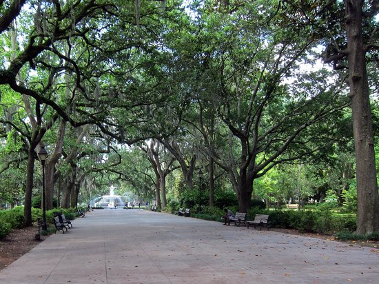 Old Town Trolley Tours of Savannah : Forsyth Park