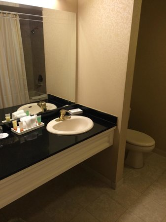 Monte Carlo Resort & Casino : Bathroom