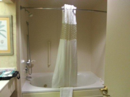 Hampton Inn & Suites New Orleans Convention Center: Hampton - Large bath - jetted tub.