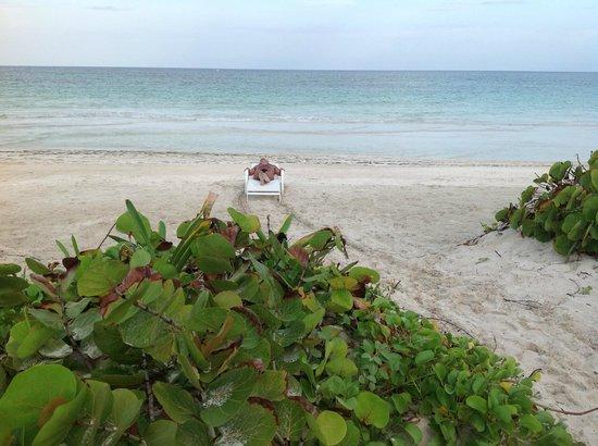 Almaplena Eco Resort & Beach Club: Descansando por la tarde
