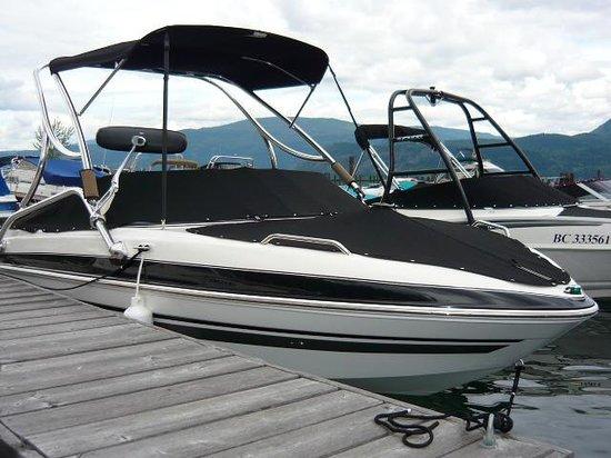 Shuswap Marina : Boat Rental