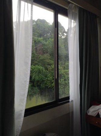 Jubilee Hotel : room window