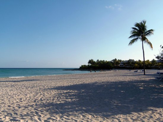 Paradisus Varadero Resort & Spa: Playa por la mañana