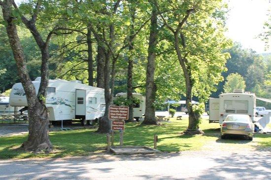 Moccasin Creek Park : Campsites