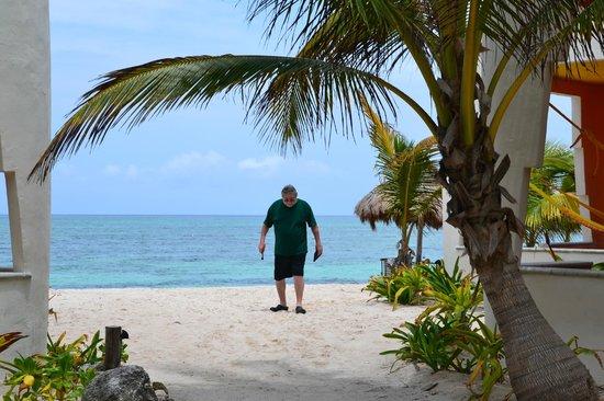 Mayan Beach Garden: short walk from room to beach