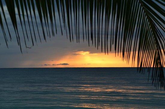 Mayan Beach Garden: Beautiful sunrises daily