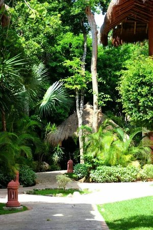 Iberostar Tucan Hotel: The grounds are beautiful every where you go
