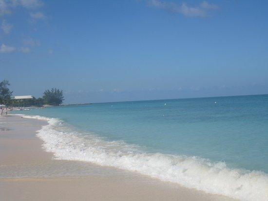 Grand Cayman Marriott Beach Resort : Beach near Marriott