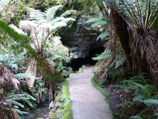 Mole Creek Caves: The entrance to Markoopa Cave