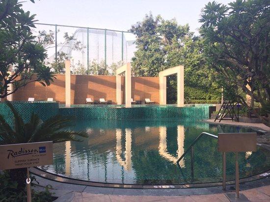 Radisson Blu Plaza Delhi: Poolside