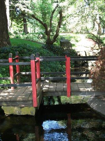 Friendship Gardens & Tipperary Park: Wooden bridge