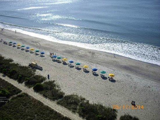 Carolinian Beach Resort: beach scene from 1132