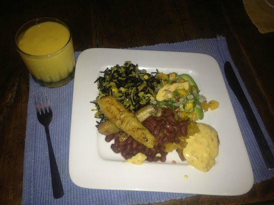 Arilapa Bed & Breakfast: Mango Lassi smoothie, fried plantain, rice, beans,and avocado radish salad with spicy mango dres