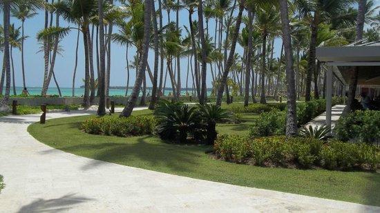 Barcelo Bavaro Beach - Adults Only: jardines