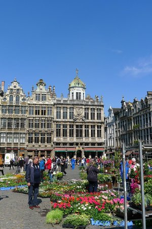 Grand Place/Grote Markt: Grand Place,with flowers