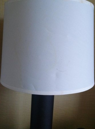 Hilton Stamford Hotel & Executive Meeting Center : stained lampshade