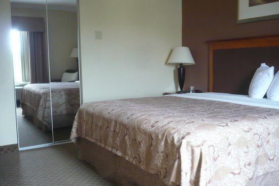 Best Western Joshua Tree Hotel & Suites : Our guest room