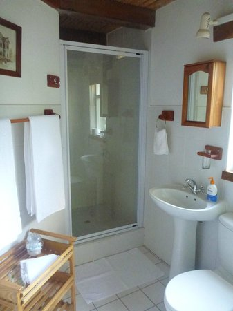 Braeside Guest House: bathroom in our room