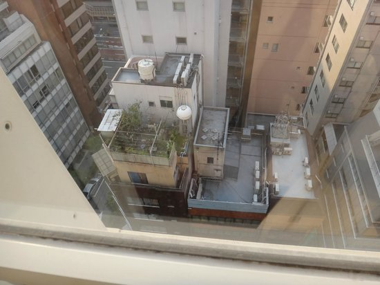 Hotel Monterey Ginza : На крыше дома рядом с отелем :-)