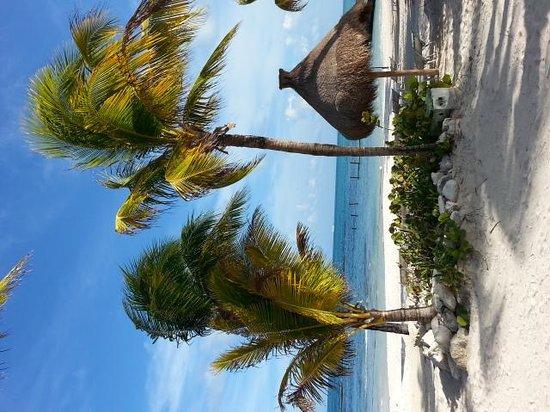 The Grand Bliss Riviera Maya: beach