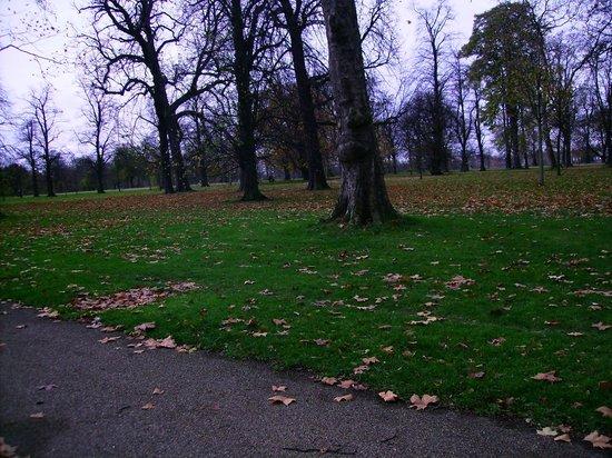 Hyde Park : Vento e frio