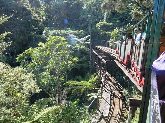 Driving Creek Railway and Potteries: Double bridge