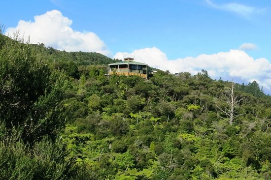 Driving Creek Railway and Potteries: Eye-ful Tower - highest point of Railway