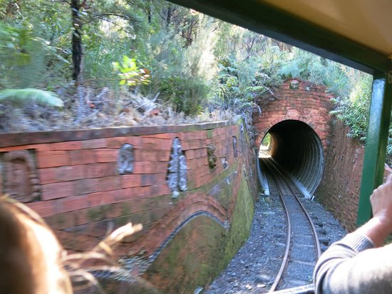 Driving Creek Railway and Potteries: Tunnel