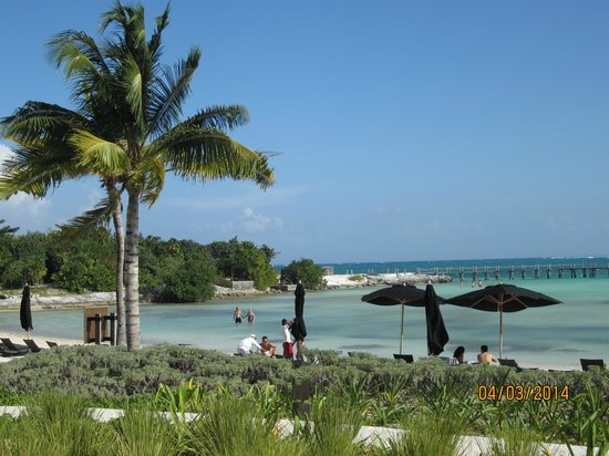 NIZUC Resort and Spa : Beach view